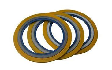 带内外环金属缠绕垫片
